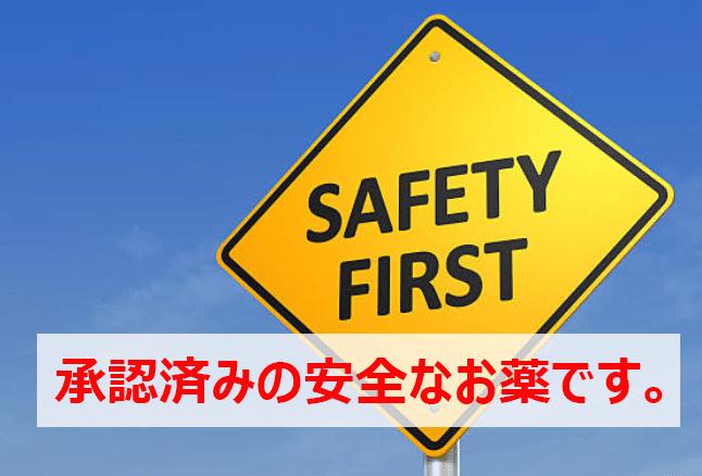 「日本国内での認可」について